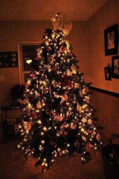 Фото ёлки на новый год в дом